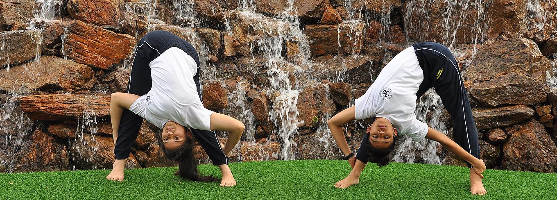 Swami Vivekananda Yoga Anusandhana Samsthana - S-VYASA